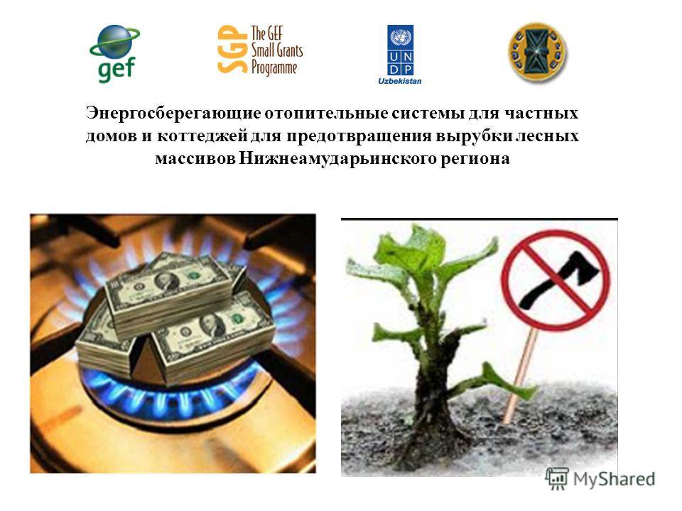 Энергосберегающие отопительные системы для частных домов и коттеджей для предотвращения вырубки лесных массивов Нижнеамударьинского региона