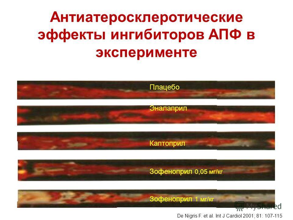 Плацебо Эналаприл Каптоприл Зофеноприл 0,05 мг/кг Зофеноприл 1 мг/кг De Nigris F. et al. Int J Cardiol 2001; 81: 107-115 Антиатеросклеротические эффекты ингибиторов АПФ в эксперименте
