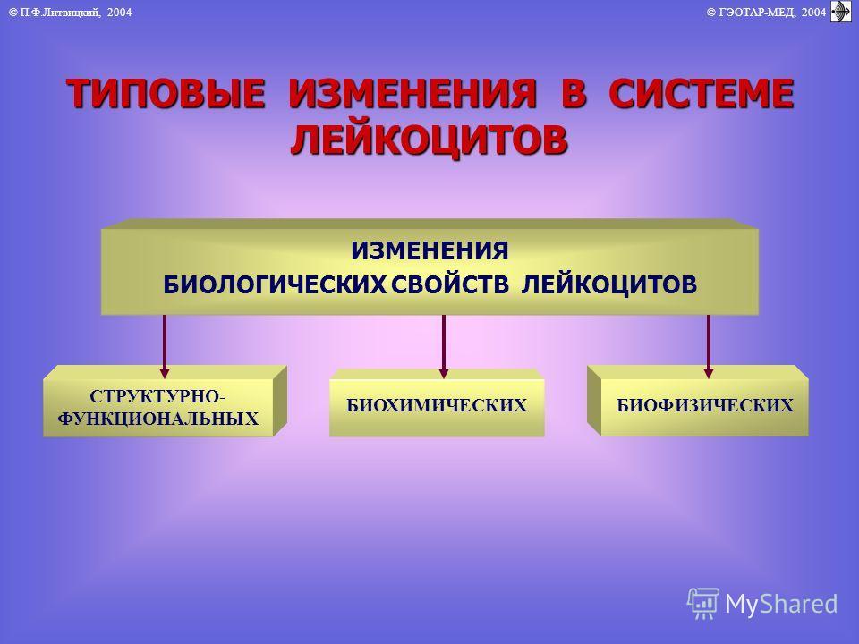 © П.Ф.Литвицкий, 2004 © ГЭОТАР-МЕД, 2004 ТИПОВЫЕ ИЗМЕНЕНИЯ В СИСТЕМЕ ЛЕЙКОЦИТОВ ИЗМЕНЕНИЯ БИОЛОГИЧЕСКИХ СВОЙСТВ ЛЕЙКОЦИТОВ СТРУКТУРНО- ФУНКЦИОНАЛЬНЫХ БИОФИЗИЧЕСКИХ БИОХИМИЧЕСКИХ