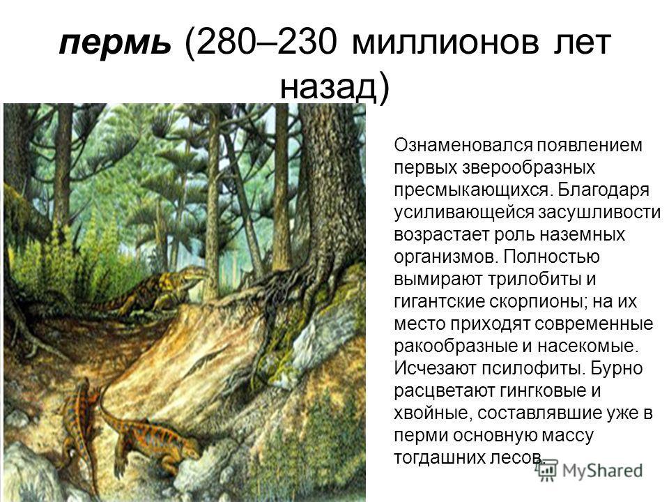пермь (280–230 миллионов лет назад) Ознаменовался появлением первых зверообразных пресмыкающихся. Благодаря усиливающейся засушливости возрастает роль наземных организмов. Полностью вымирают трилобиты и гигантские скорпионы; на их место приходят совр