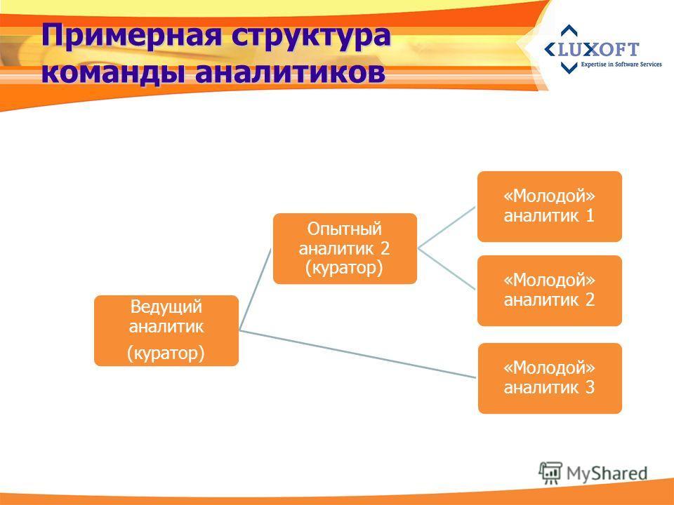 Примерная структура команды аналитиков Ведущий аналитик (куратор) Опытный аналитик 2 (куратор) «Молодой» аналитик 1 «Молодой» аналитик 2 «Молодой» аналитик 3