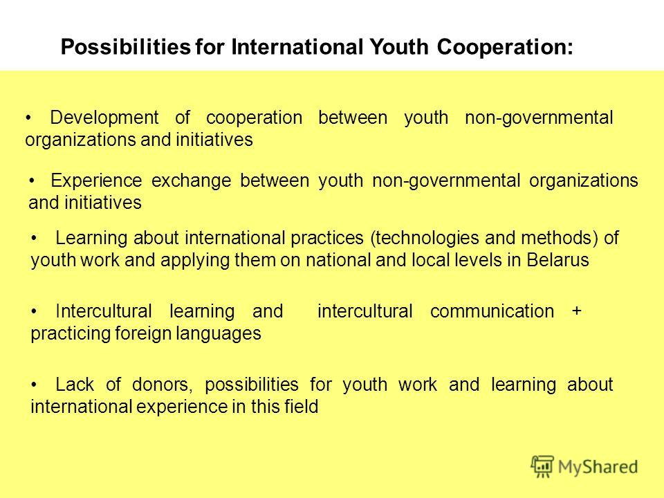 Possibilities for International Youth Cooperation: Development of cooperation between youth non-governmental organizations and initiatives Experience exchange between youth non-governmental organizations and initiatives Learning about international p