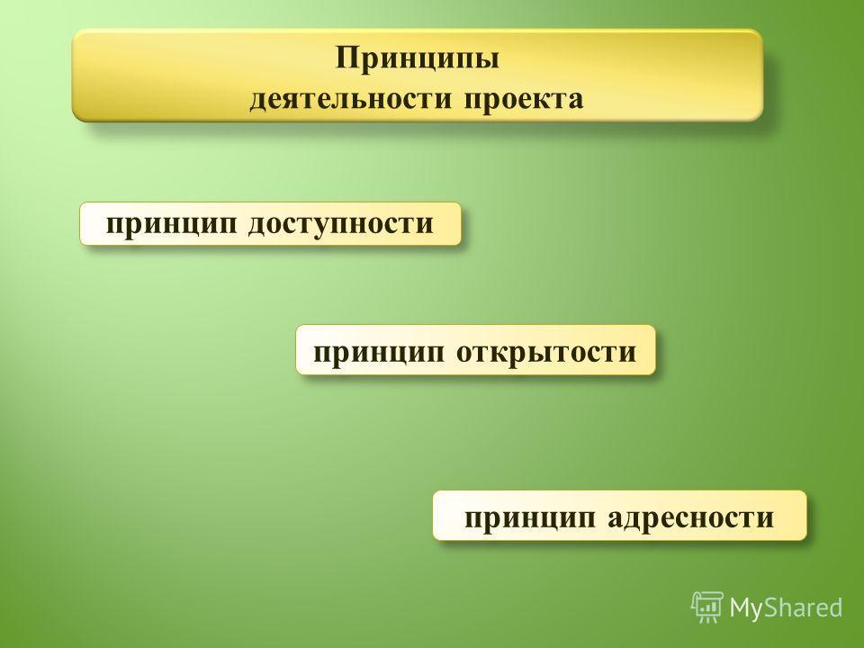 Принципы деятельности проекта принцип доступности принцип открытости принцип адресности