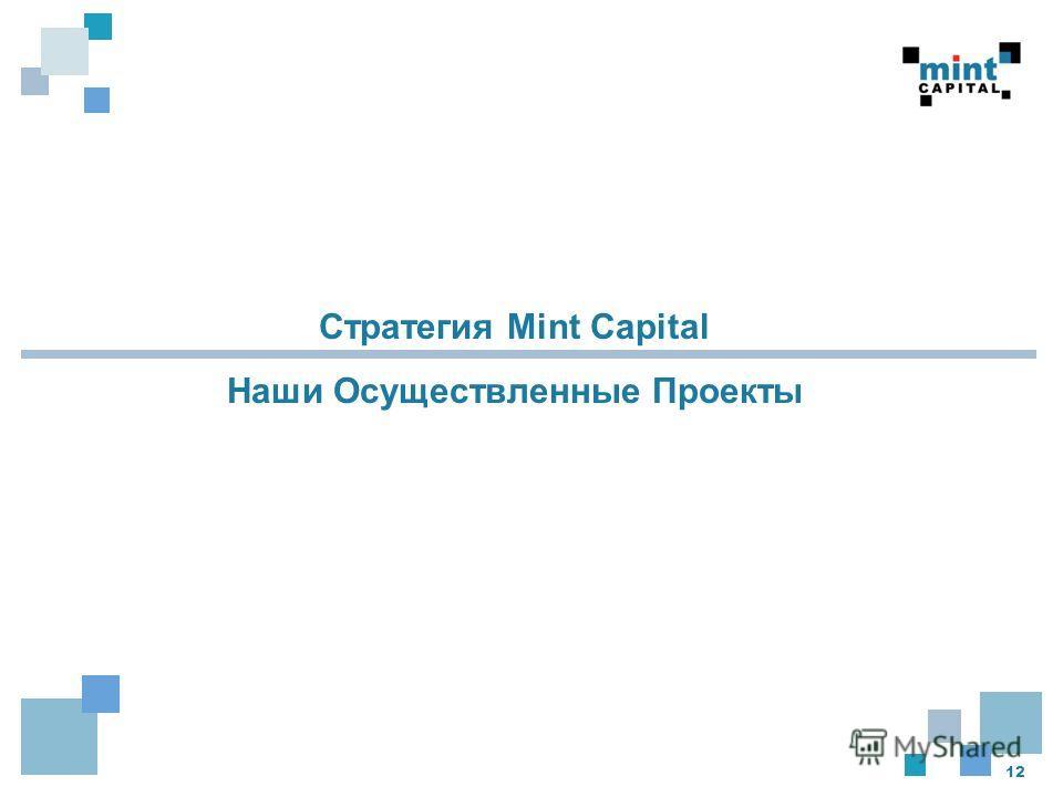 12 Стратегия Mint Capital Наши Осуществленные Проекты