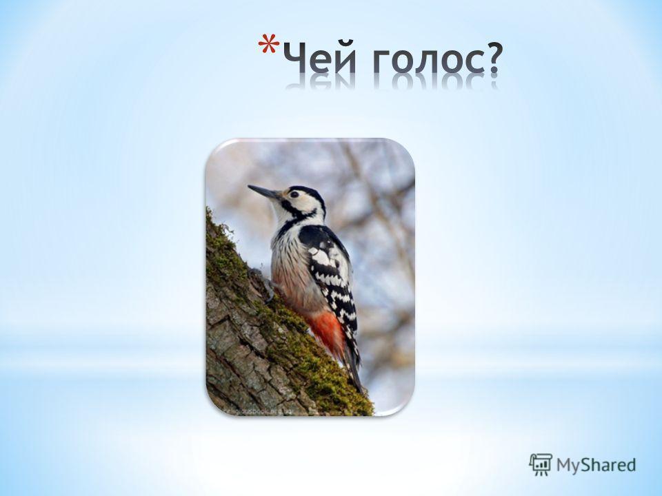 -Попробуйте вспомнить, как и о ком у нас говорят в народе,используя названия птиц. Итак, начнем… 1.Важный или надутый, как….. 2.Ярко, вызывающе одетый, как … 3.Болтать или трещать, как … 4.Длинноногий, как … 5.Накаркать (накликать беду), как…. 6.Долб