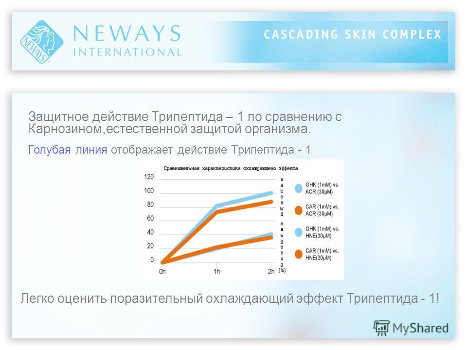 Защитное действие Трипептида – 1 по сравнению с Карнозином,естественной защитой организма. Голубая линия отображает действие Трипептида - 1 Легко оценить поразительный охлаждающий эффект Трипептида - 1!