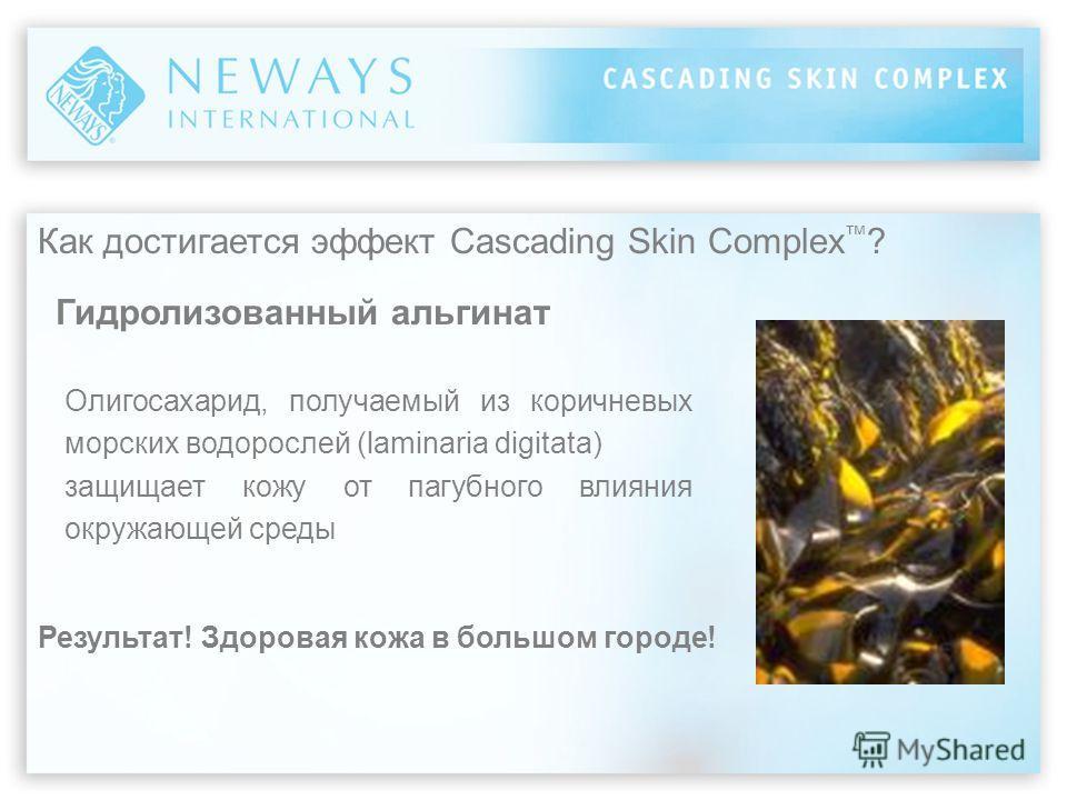 Как достигается эффект Cascading Skin Complex ? Гидролизованный альгинат Олигосахарид, получаемый из коричневых морских водорослей (laminaria digitata) защищает кожу от пагубного влияния окружающей среды Результат! Здоровая кожа в большом городе!