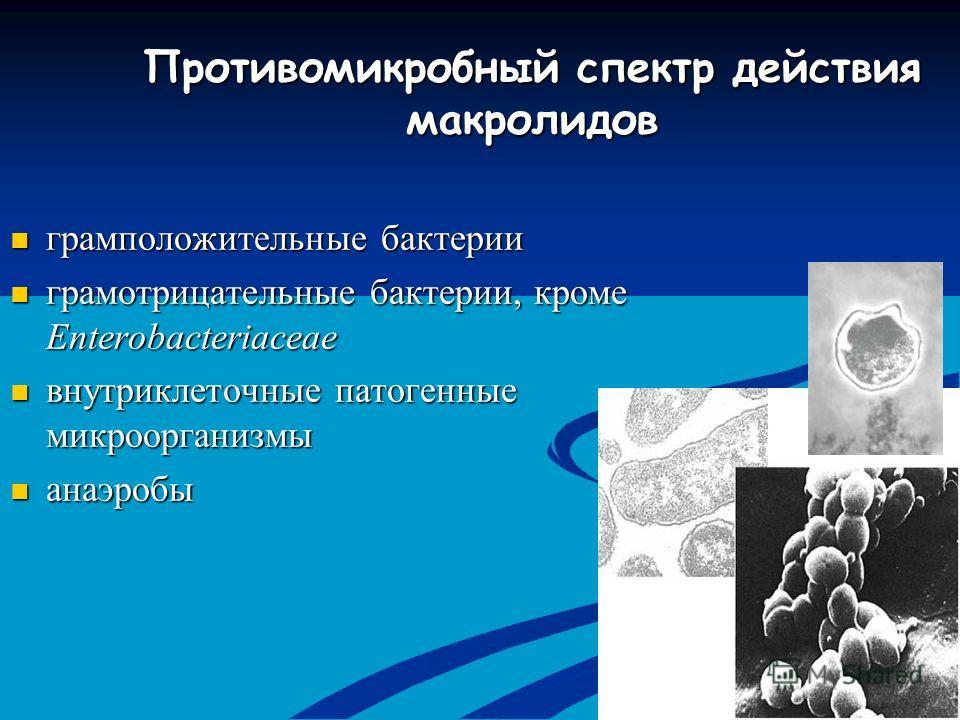 Противомикробный спектр действия макролидов грамположительные бактерии грамположительные бактерии грамотрицательные бактерии, кроме Enterobacteriaceae грамотрицательные бактерии, кроме Enterobacteriaceae внутриклеточные патогенные микроорганизмы внут