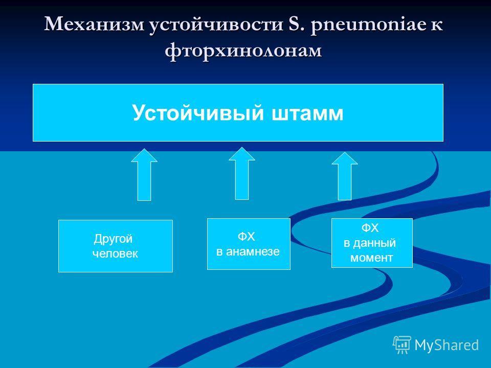 Механизм устойчивости S. pneumoniae к фторхинолонам Устойчивый штамм Другой человек ФХ в анамнезе ФХ в данный момент