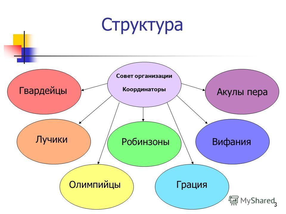 3 Структура Совет организации Координаторы Гвардейцы Лучики Олимпийцы Робинзоны Грация Вифания Акулы пера