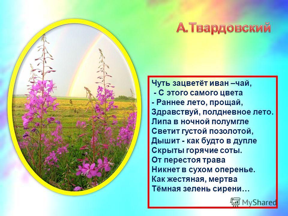 Чуть зацветёт иван –чай, - С этого самого цвета - Раннее лето, прощай, Здравствуй, полдневное лето. Липа в ночной полумгле Светит густой позолотой, Дышит - как будто в дупле Скрыты горячие соты. От перестоя трава Никнет в сухом оперенье. Как жестяная