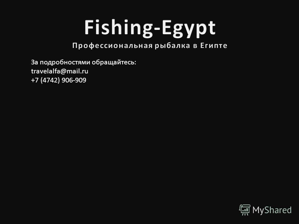 За подробностями обращайтесь: travelalfa@mail.ru +7 (4742) 906-909