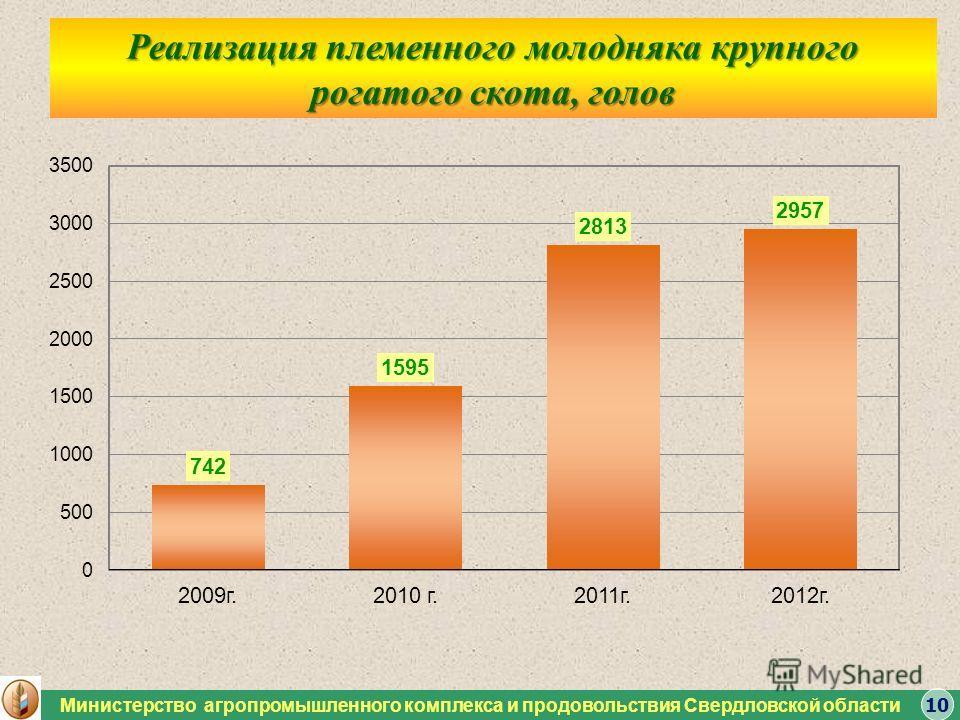 Министерство агропромышленного комплекса и продовольствия Свердловской области Реализация племенного молодняка крупного рогатого скота, голов 10