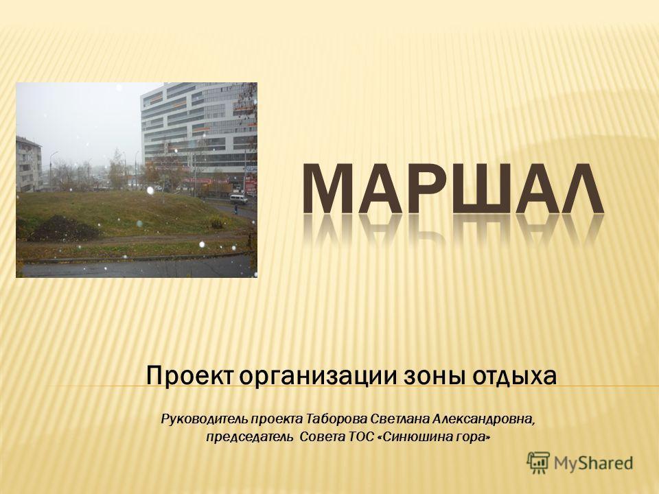 Проект организации зоны отдыха Руководитель проекта Таборова Светлана Александровна, председатель Совета ТОС «Синюшина гора»