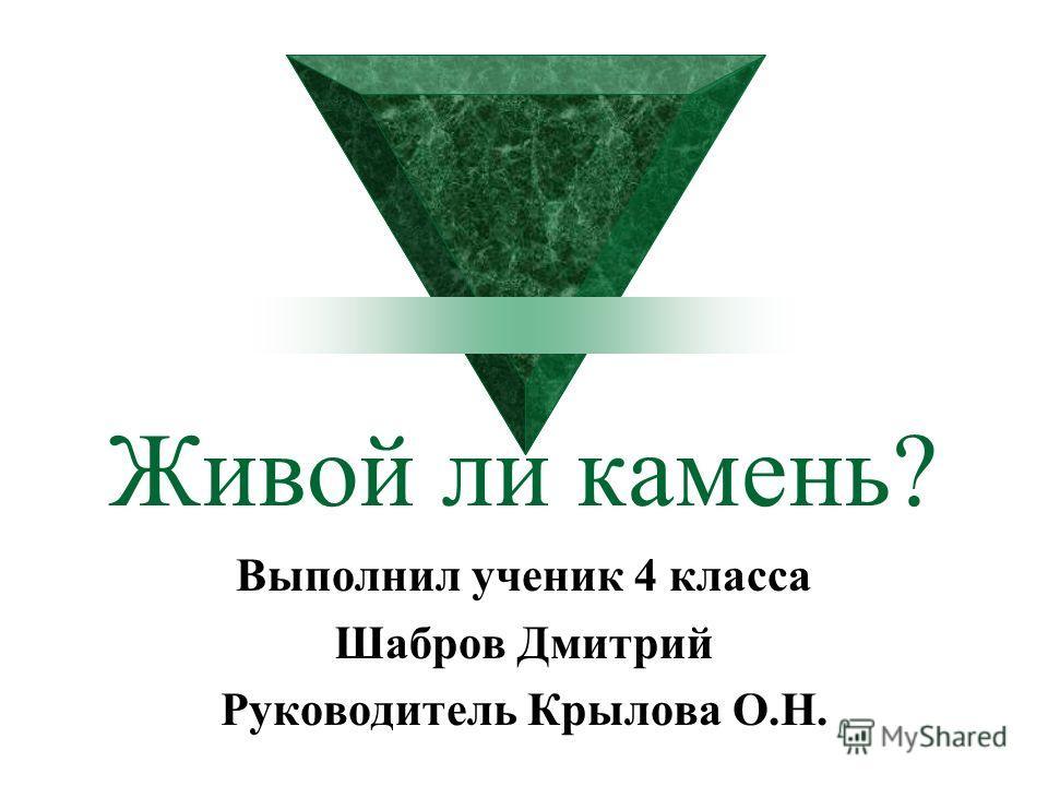 Живой ли камень? Выполнил ученик 4 класса Шабров Дмитрий Руководитель Крылова О.Н.
