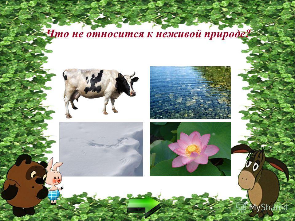Что не относится к живой природе?