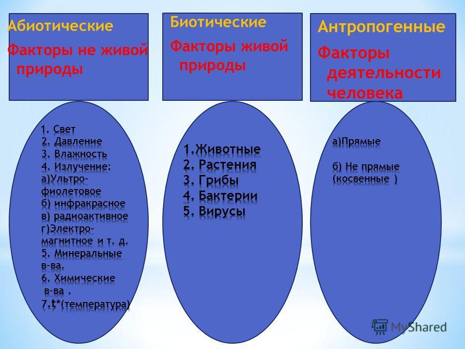 Абиотические Факторы не живой природы Биотические Факторы живой природы Антропогенные Факторы деятельности человека