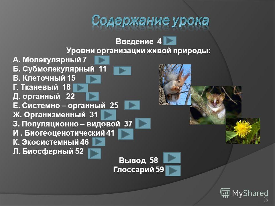 Введение 4 Уровни организации живой природы: А. Молекулярный 7 Б. Субмолекулярный 11 В. Клеточный 15 Г. Тканевый 18 Д. органный 22 Е. Системно – органный 25 Ж. Организменный 31 З. Популяционно – видовой 37 И. Биогеоценотический 41 К. Экосистемный 46