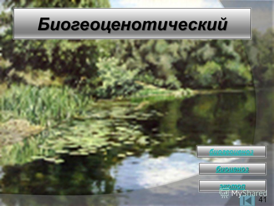 Биогеоценотический биогеоценоз биоценоз экотоп 41