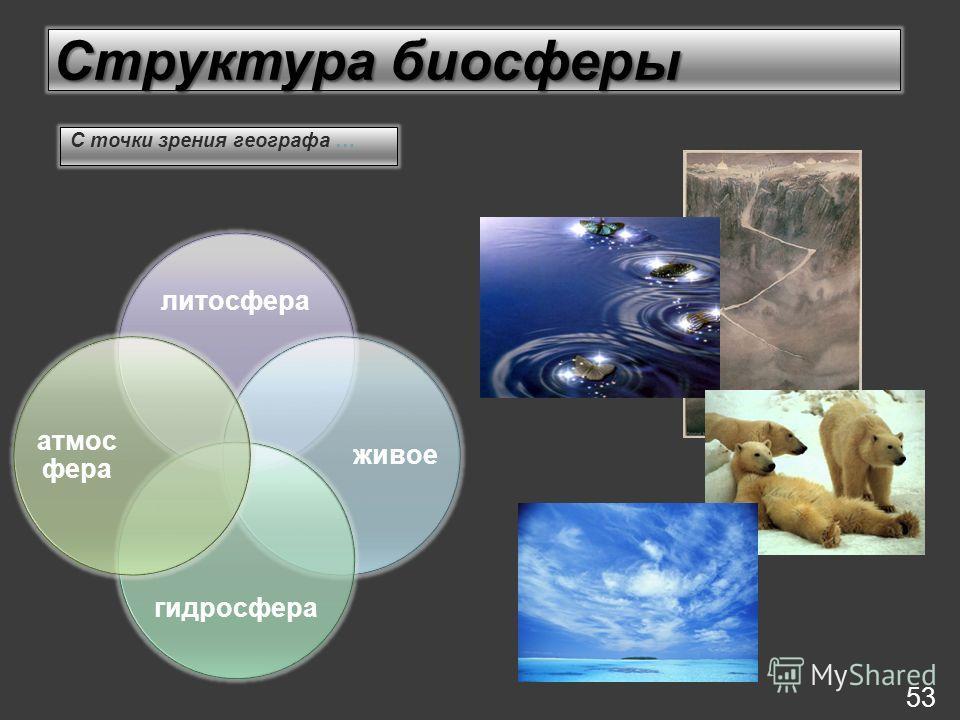 Структура биосферы литосфера живое гидросфера атмос фера 53