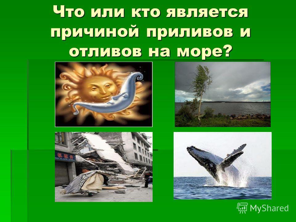 Что или кто является причиной приливов и отливов на море?