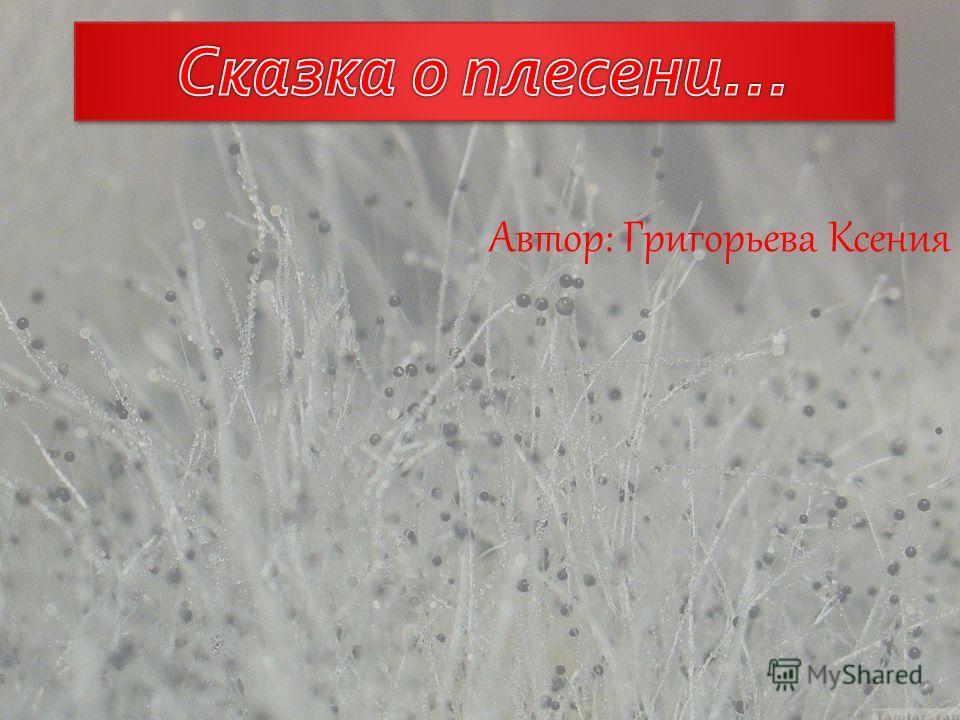 Автор: Григорьева Ксения 1