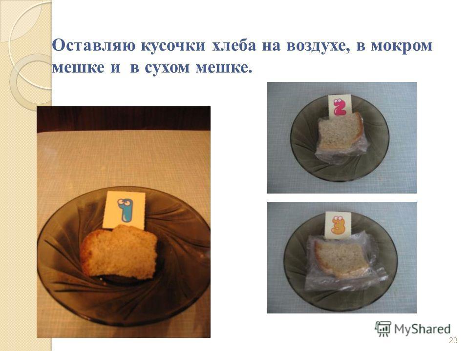 Оставляю кусочки хлеба на воздухе, в мокром мешке и в сухом мешке. 23