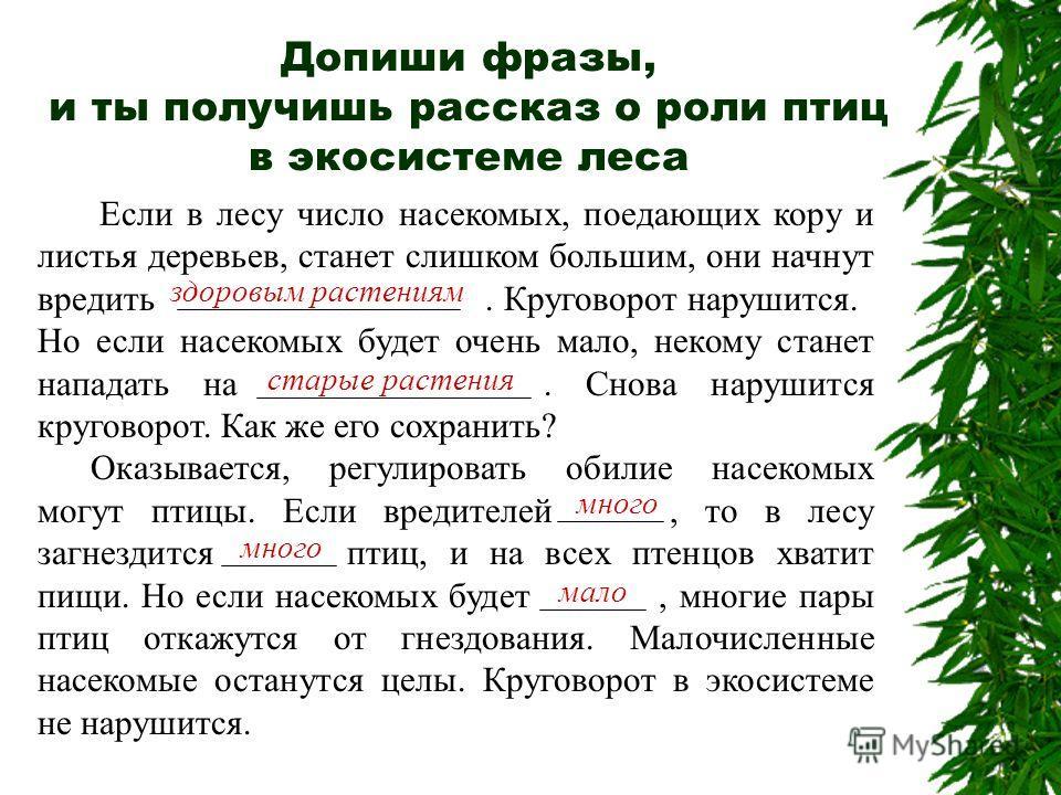 Если в лесу число насекомых, поедающих кору и листья деревьев, станет слишком большим, они начнут вредить здоровым растениям. Круговорот нарушится. Но если насекомых будет очень мало, некому станет нападать на старые растения. Снова нарушится кругово