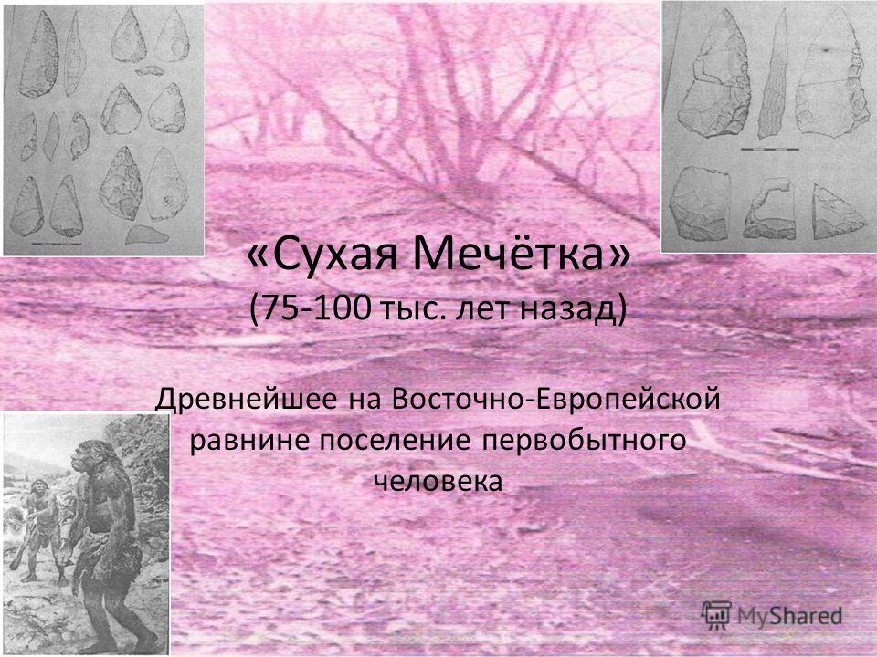«Сухая Мечётка» (75-100 тыс. лет назад) Древнейшее на Восточно-Европейской равнине поселение первобытного человека