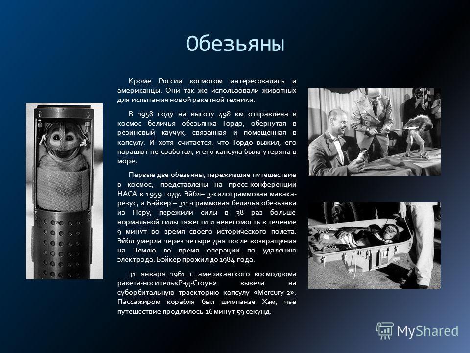 Обезьяны Кроме России космосом интересовались и американцы. Они так же использовали животных для испытания новой ракетной техники. В 1958 году на высоту 498 км отправлена в космос беличья обезьянка Гордо, обернутая в резиновый каучук, связанная и пом