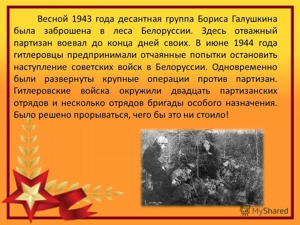 Весной 1943 года десантная группа Бориса Галушкина была заброшена в леса Белоруссии. Здесь отважный партизан воевал до конца дней своих. В июне 1944 года гитлеровцы предпринимали отчаянные попытки остановить наступление советских войск в Белоруссии.