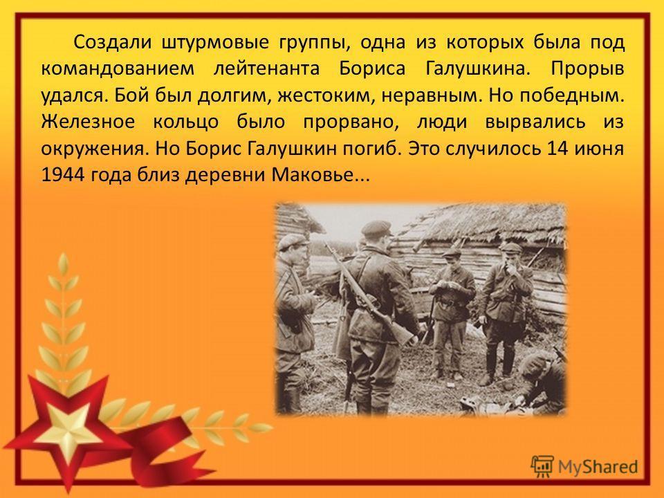 Создали штурмовые группы, одна из которых была под командованием лейтенанта Бориса Галушкина. Прорыв удался. Бой был долгим, жестоким, неравным. Но победным. Железное кольцо было прорвано, люди вырвались из окружения. Но Борис Галушкин погиб. Это слу
