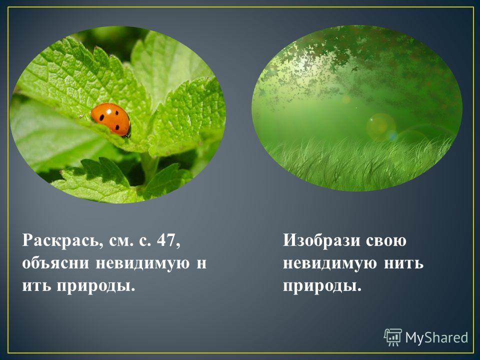 Раскрась, см. с. 47, объясни невидимую н ить природы. Изобрази свою невидимую нить природы.