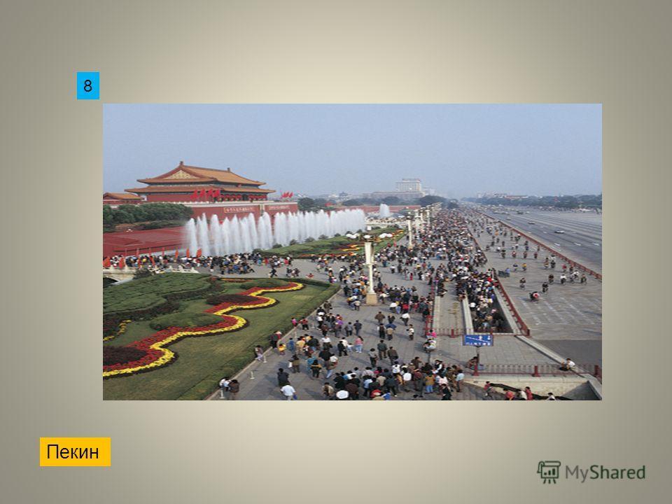 Пекин 8