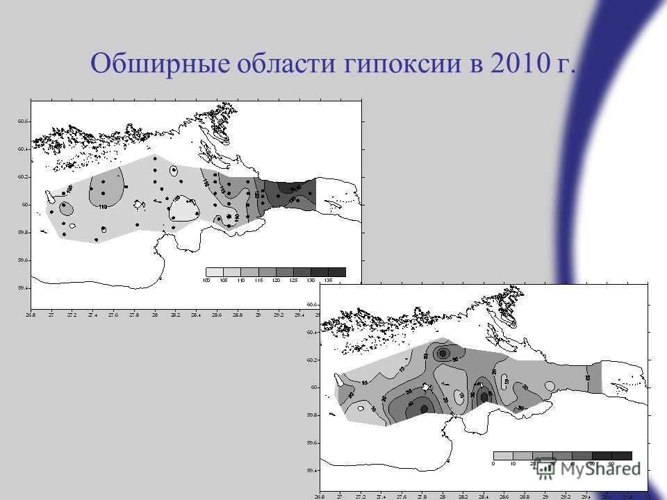 Обширные области гипоксии в 2010 г.