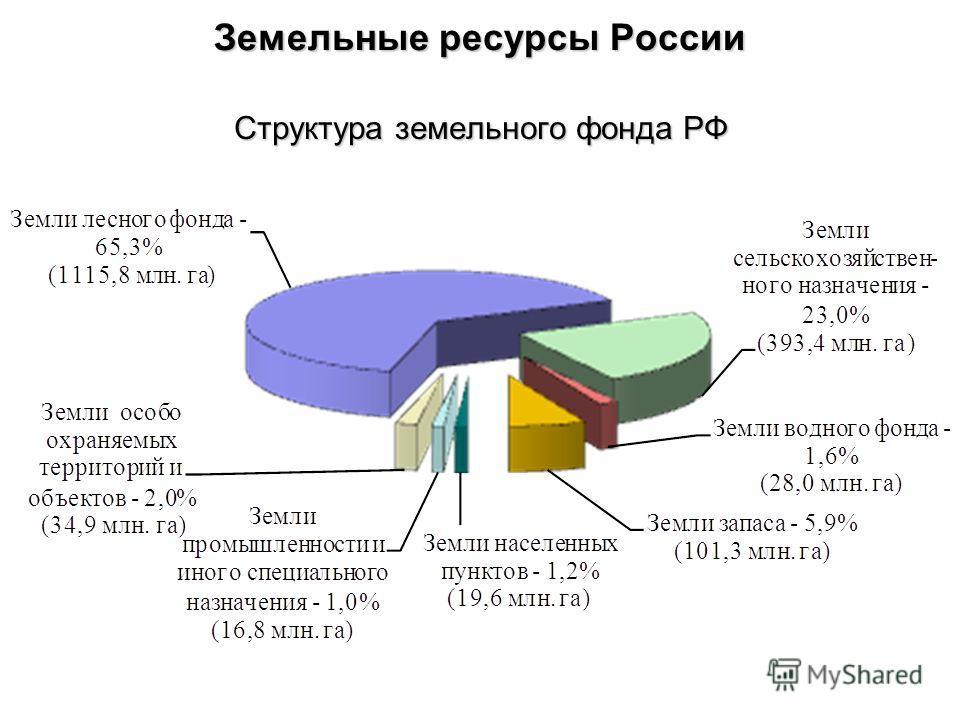 Земельные ресурсы России Структура земельного фонда РФ
