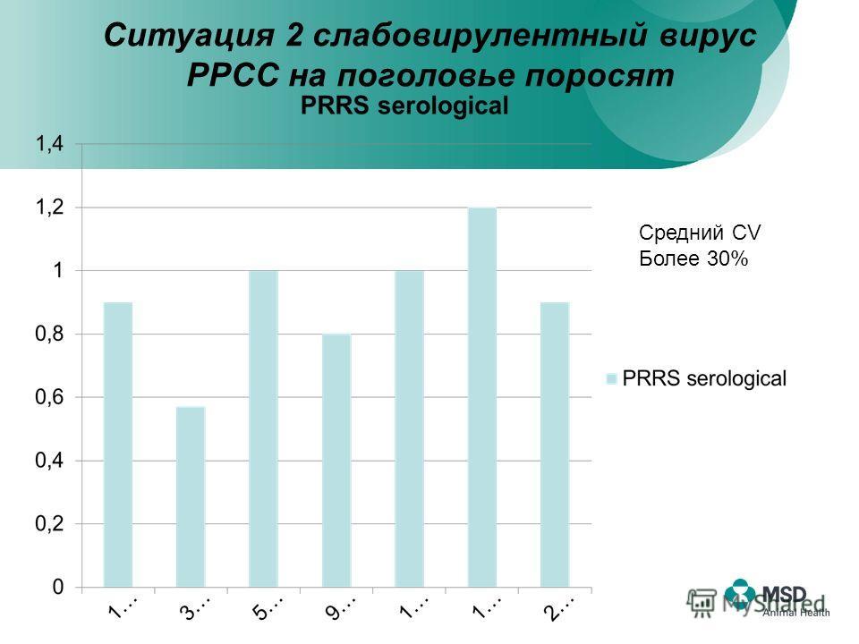 Ситуация 2 слабовирулентный вирус РРСС на поголовье поросят Средний СV Более 30%