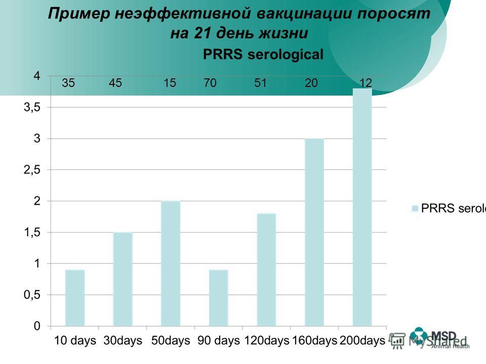 Пример неэффективной вакцинации поросят на 21 день жизни 35 45 15 70 51 20 12