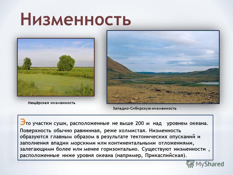 Низменность Мещёрская низменность Западно-Сибирскую низменность
