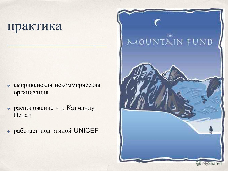 практика американская некоммерческая организация расположение - г. Катманду, Непал работает под эгидой UNICEF