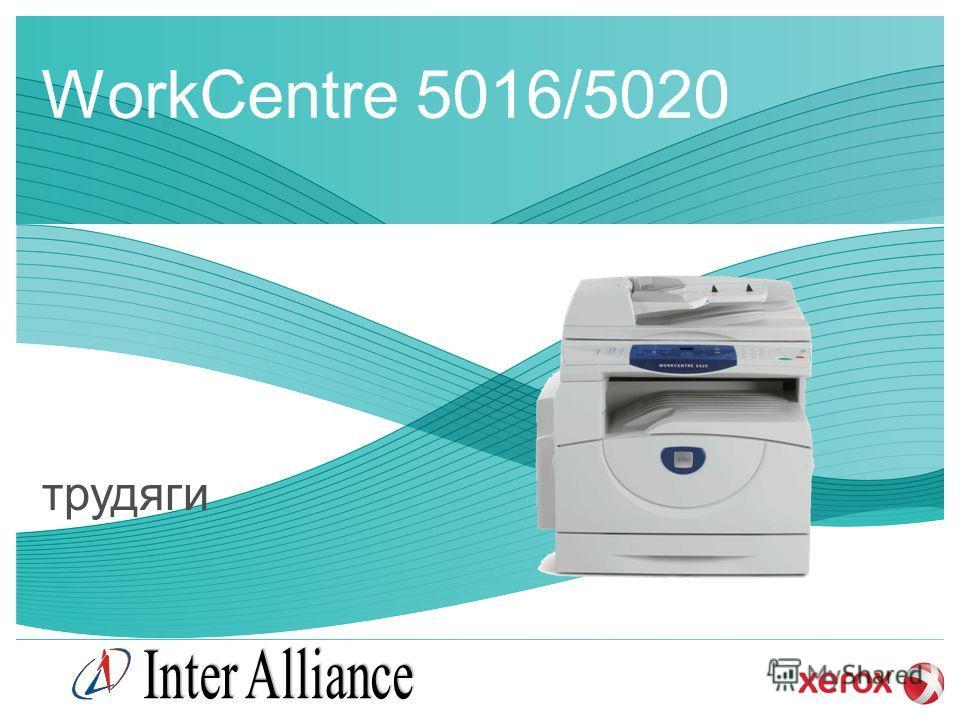 WorkCentre 5016/5020 трудяги