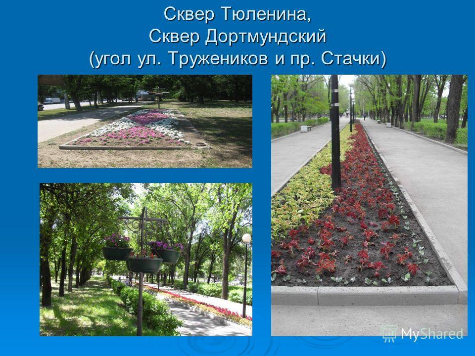 Сквер Тюленина, Сквер Дортмундский (угол ул. Тружеников и пр. Стачки)
