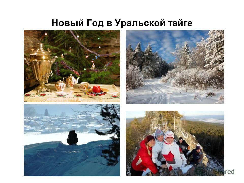Новый Год в Уральской тайге