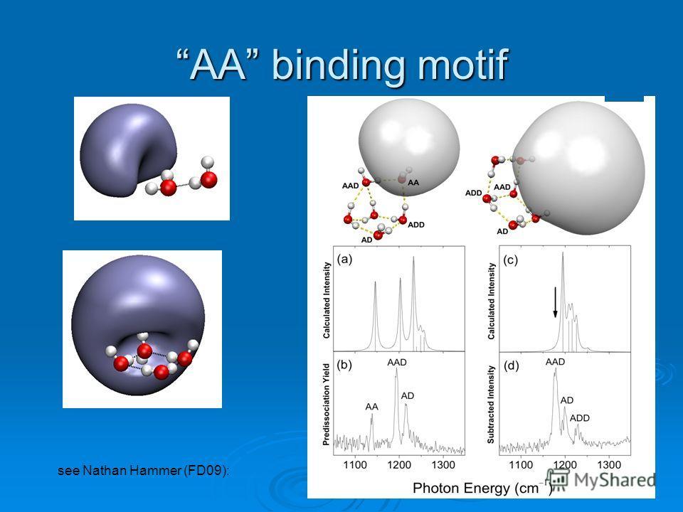 AA binding motif see Nathan Hammer (FD09):