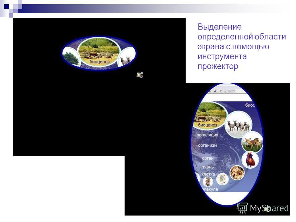 Выделение определенной области экрана с помощью инструмента прожектор