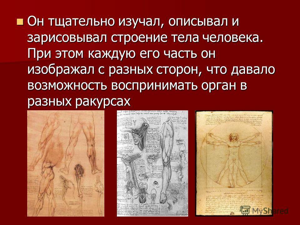 Он тщательно изучал, описывал и зарисовывал строение тела человека. При этом каждую его часть он изображал с разных сторон, что давало возможность воспринимать орган в разных ракурсах Он тщательно изучал, описывал и зарисовывал строение тела человека