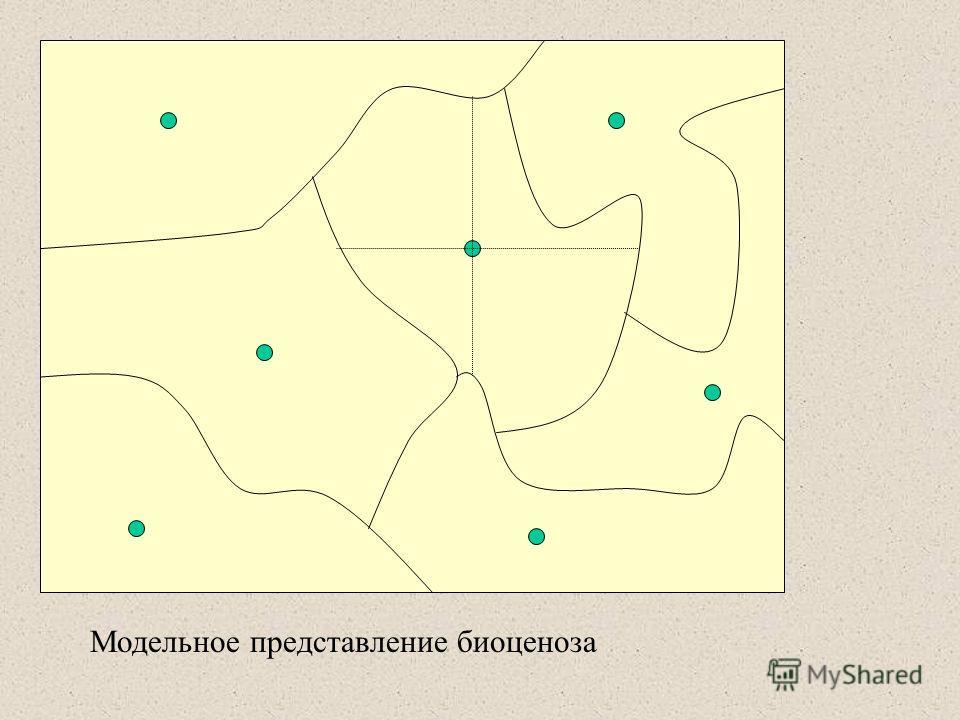 Модельное представление биоценоза