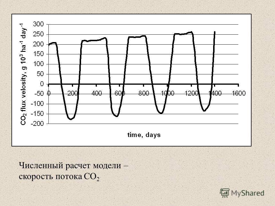 Численный расчет модели – скорость потока CO 2