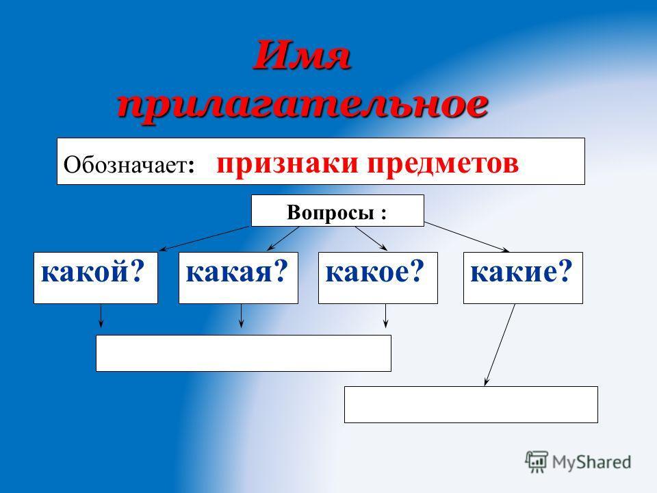 Имя прилагательное Вопросы : Обозначает: признаки предметов какой?какая?какое?какие?