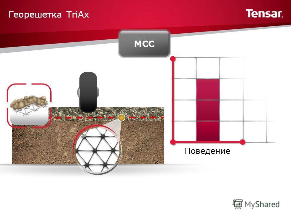 Георешетка TriAx Поведение МСС